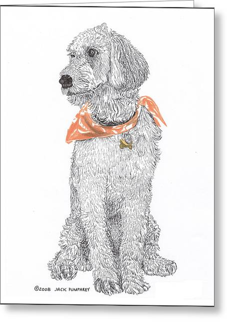 Stretching Drawings Greeting Cards - Trash Talking Golden Doodle Greeting Card by Jack Pumphrey