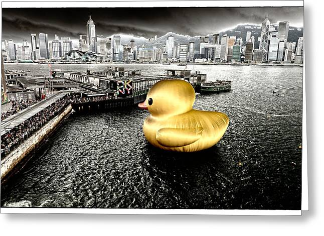 Sha Greeting Cards - Golden duck in Victoria Harbor Greeting Card by Thierry CHRIN
