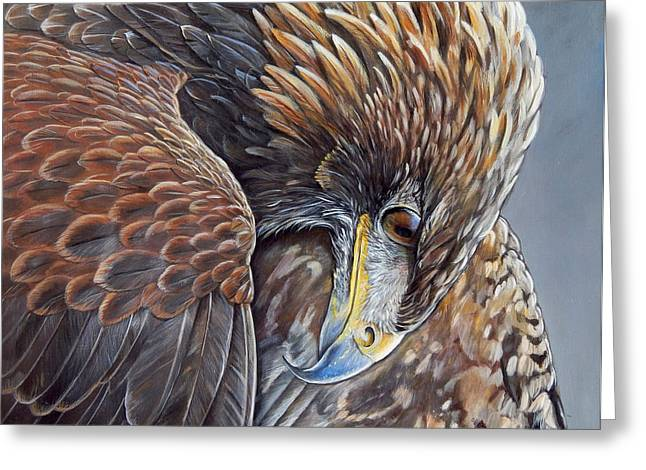 Golden Brown Paintings Greeting Cards - Golden Eagle Greeting Card by Arie Van der Wijst