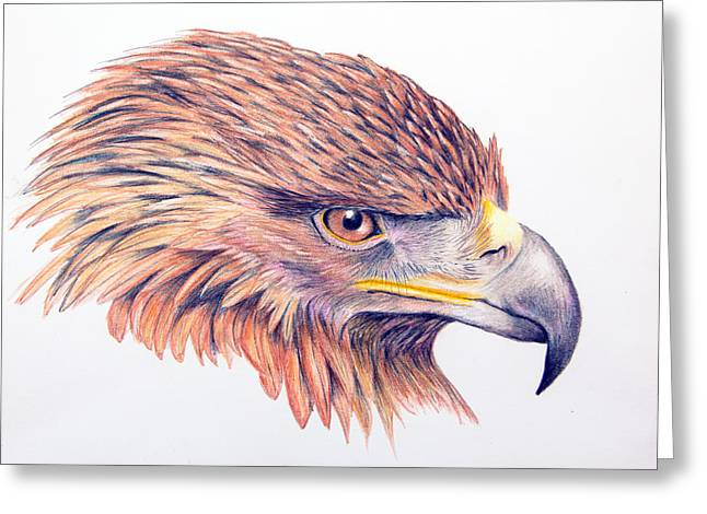 Mary Mayes Greeting Cards - Golden Eagle Greeting Card by Mary Mayes
