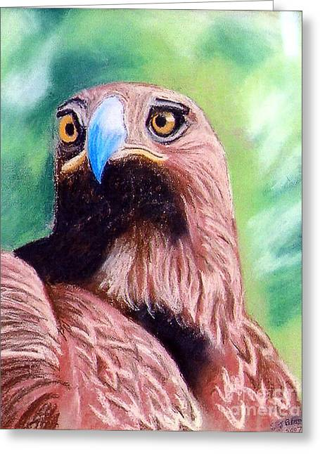Flying Bird Pastels Greeting Cards - Golden Eagle Greeting Card by Stephen Brooks