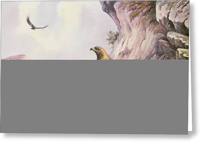 Rocky Cliff Greeting Cards - Golden Eagles At Their Eyrie Wc Greeting Card by Carl Donner