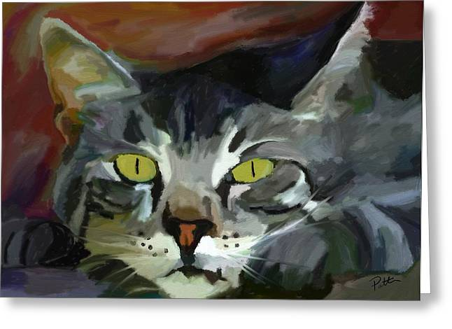 Tom Cat Greeting Cards - Golden Eyes Greeting Card by Patti Siehien