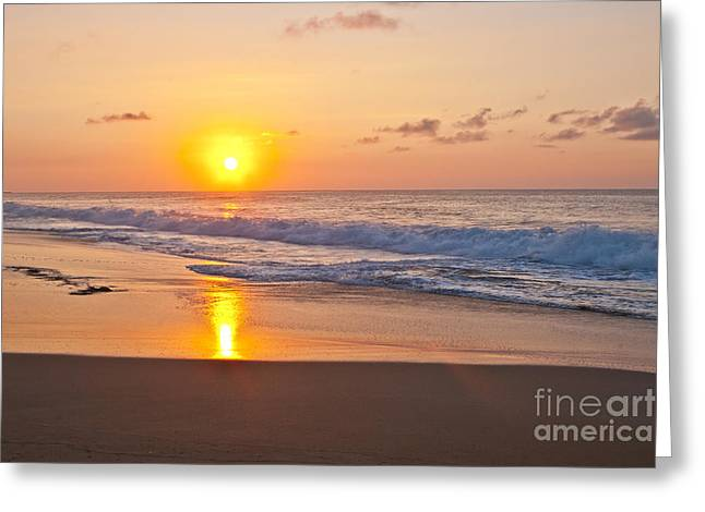 Oranage Greeting Cards - Golden Greeting Card by F Innes - Finesse Fine Art