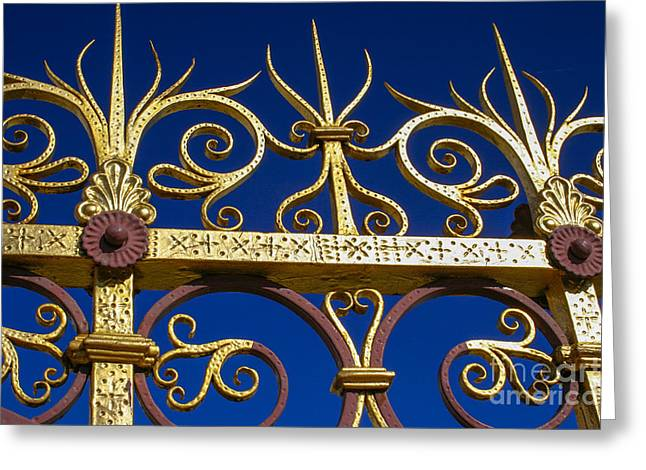 Floral Motif Greeting Cards - Golden fence Greeting Card by Patricia Hofmeester
