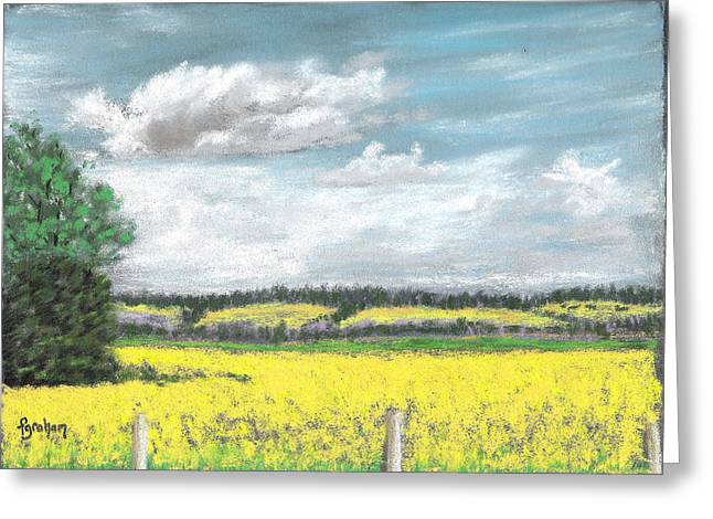 July Pastels Greeting Cards - Golden Fields of Alberta Greeting Card by Fiona Graham