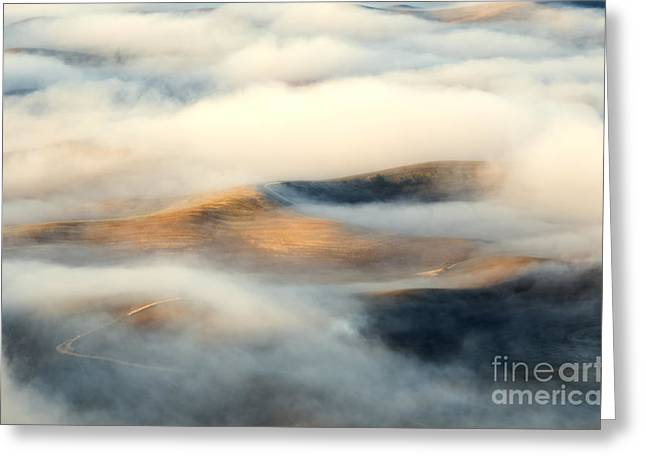 Undulating Greeting Cards - Golden Fleece Greeting Card by Mike Dawson