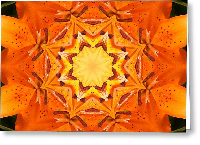 Green Barbara Griffin Art Greeting Cards - Golden Flower - Abstract - Kaleidoscope2 Greeting Card by Barbara Griffin
