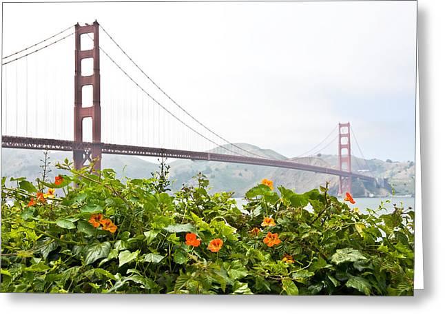 Golden Gate Bridge 2 Greeting Card by Shane Kelly