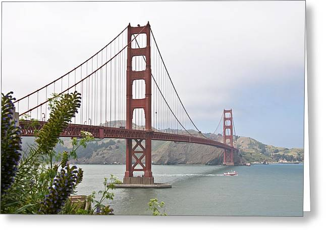 Flower Greeting Cards - Golden Gate Bridge 3 Greeting Card by Shane Kelly