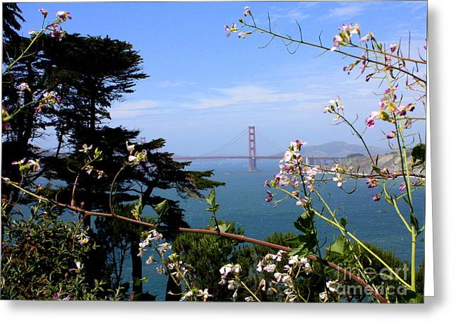 Carol Groenen Golden Greeting Cards - Golden Gate Bridge and Wildflowers Greeting Card by Carol Groenen