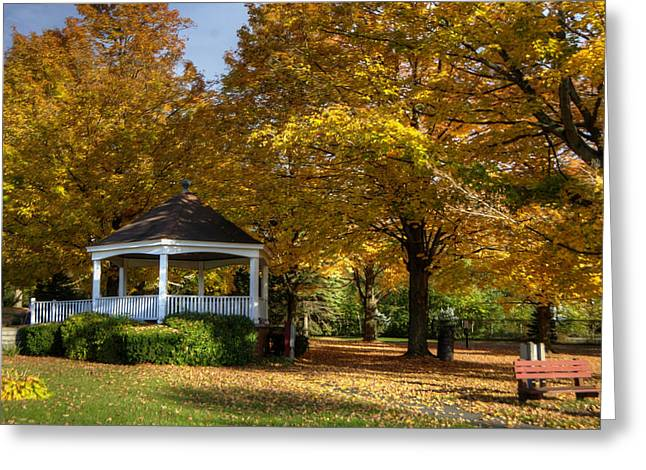 Gold Leave Greeting Cards - Golden Gazebo Greeting Card by Donna Doherty