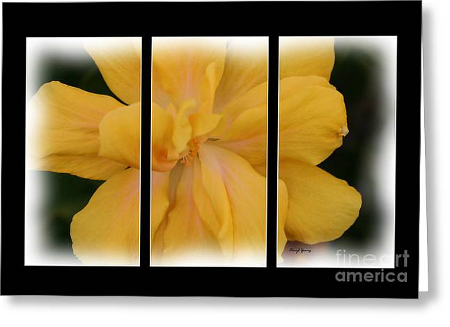 Reception Greeting Cards - Golden Girl Triptych Greeting Card by Cheryl Young