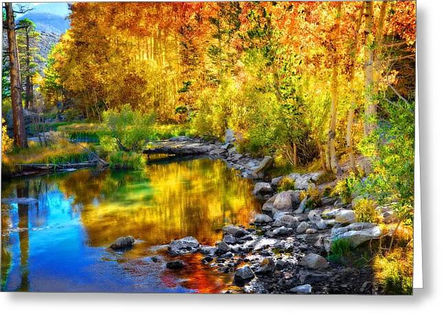 Beautiful Creek Greeting Cards - Golden Glow Greeting Card by Lynn Bauer
