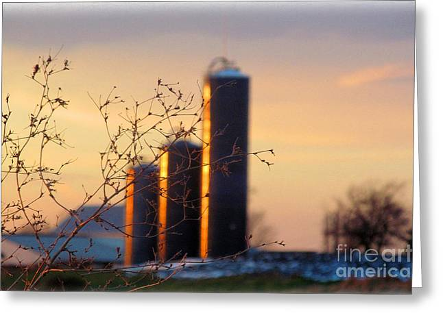 Wintery Barn Greeting Cards - Golden Glow Silos Greeting Card by Tina M Wenger