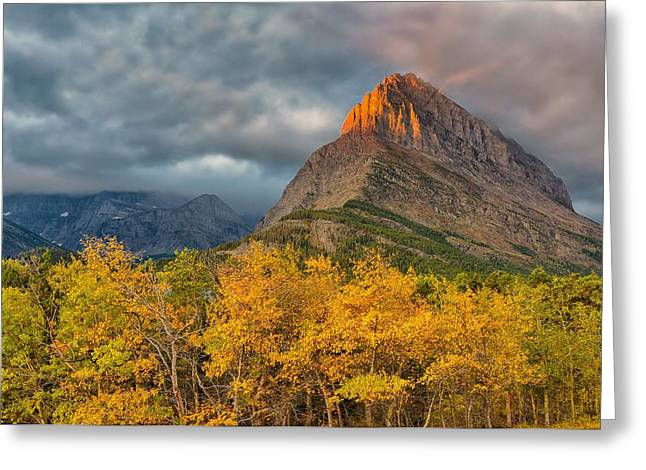Swiftcurrent Falls Greeting Cards - Golden Grinnell Greeting Card by Philip Kuntz