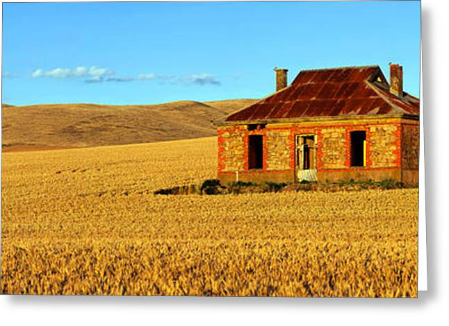 Abandoned House Greeting Cards - Golden Harvest Greeting Card by Bill  Robinson
