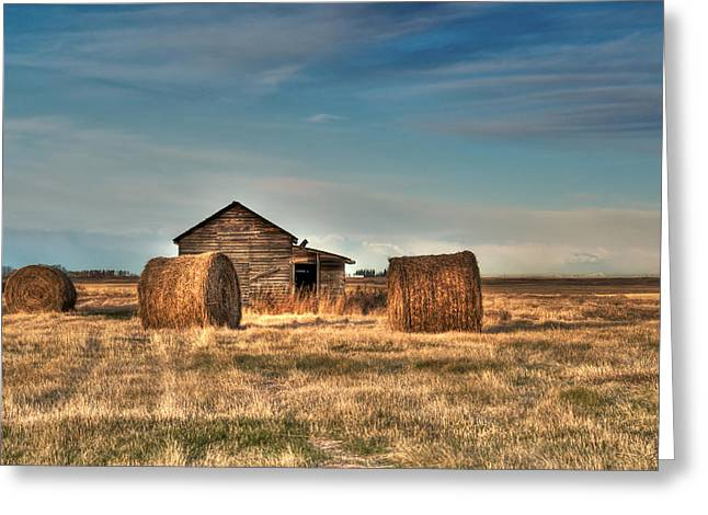 Hay Bales Greeting Cards - Golden Hay Greeting Card by Lisa Knechtel