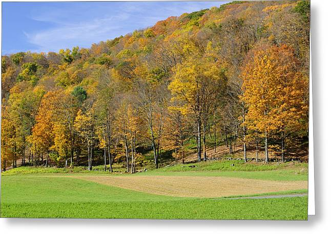 Western Massachusetts Greeting Cards - Golden Hills Greeting Card by Luke Moore