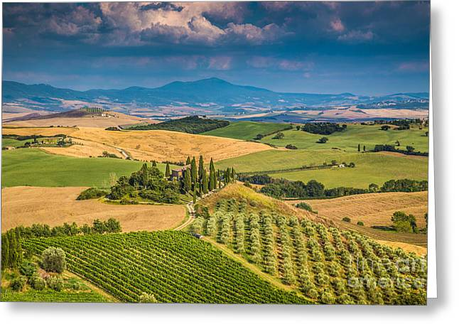 Tuscan Sunset Greeting Cards - Golden hills of Tuscany Greeting Card by JR Photography