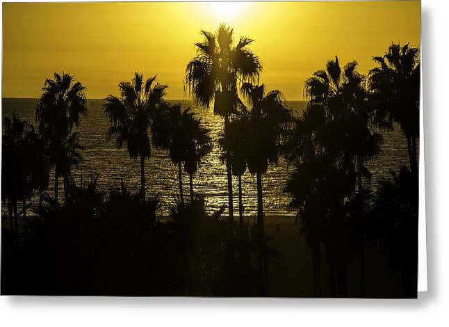 Venice Beach Palms Greeting Cards - Golden Hour Greeting Card by Art K