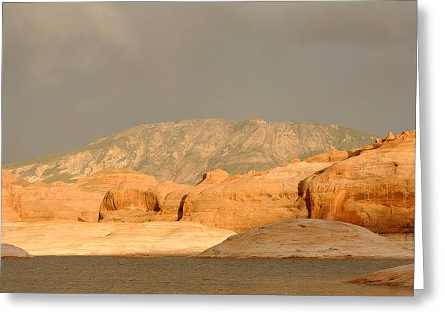 Desert Lake Greeting Cards - Golden Hour at Lake Powell Greeting Card by Julie Niemela