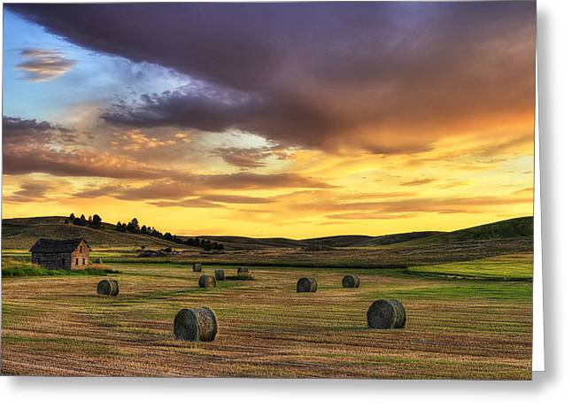 Hay Bale Greeting Cards - Golden Hour Farm Greeting Card by Mark Kiver