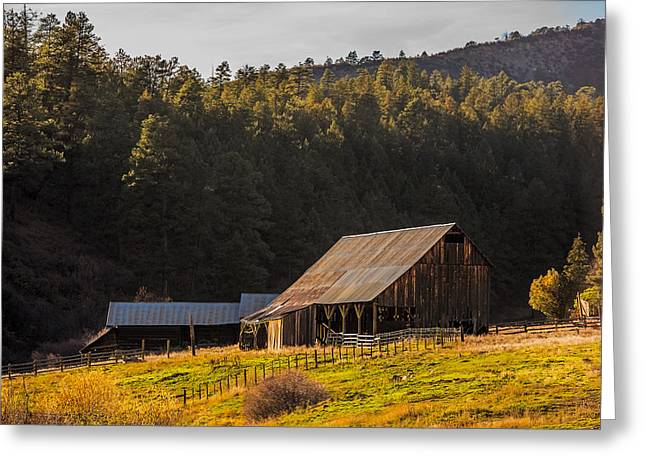 Barn Yard Greeting Cards - Golden Hour on Colorado Barn Greeting Card by Paul Freidlund