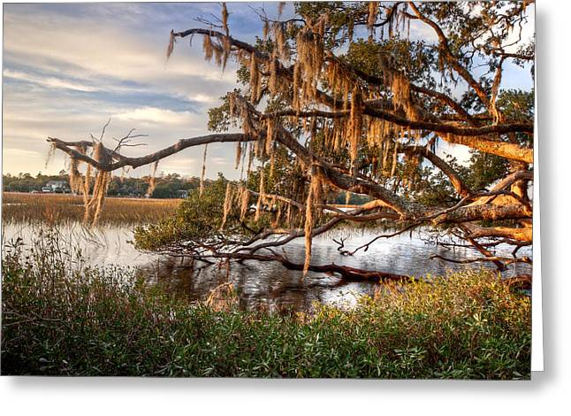 Boone Hall Greeting Cards - Golden Hour on the Creek Greeting Card by Walt  Baker