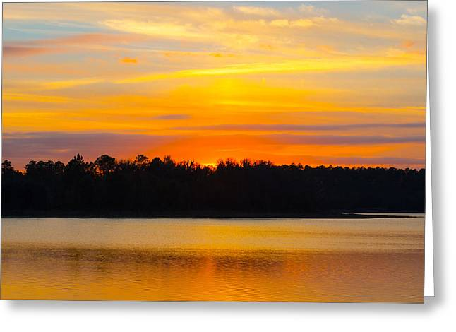 Florida House Greeting Cards - Golden Hues Greeting Card by Parker Cunningham