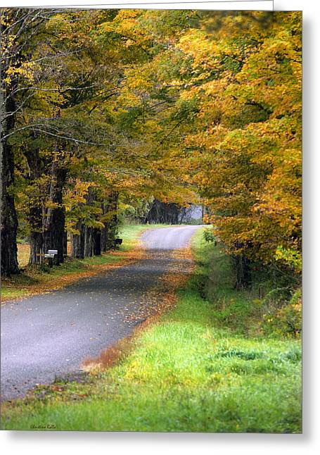 Fall Scenes Greeting Cards - Golden Journey Down Autumn Roads Greeting Card by Christina Rollo