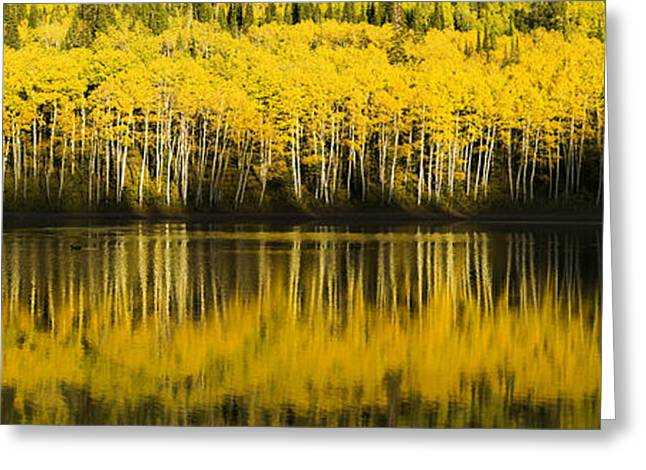 Golden Lake Greeting Card by Chad Dutson