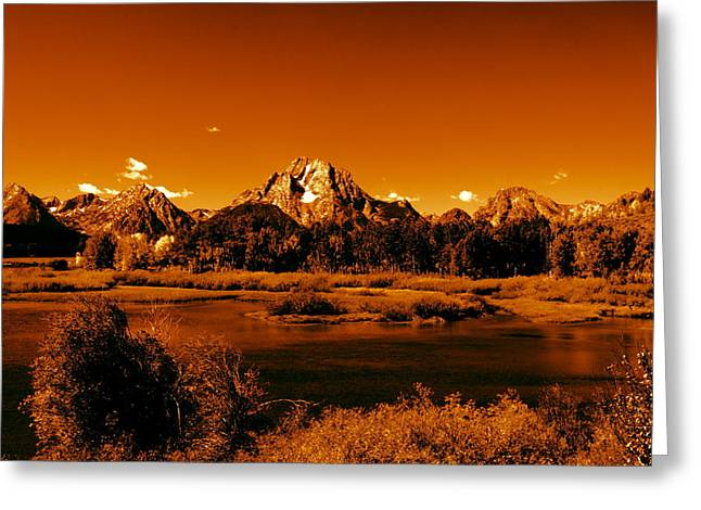 Golden Landscape Greeting Card by Aidan Moran