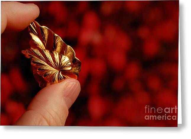 Golden Leaves Greeting Card by Amy Cicconi