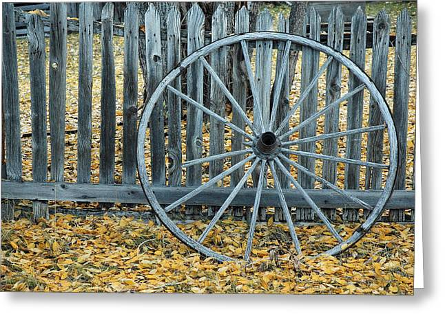 Gold Trout Greeting Cards - Golden Leaves and Old Wagon Wheel Against a Fence Greeting Card by Bruce Gourley