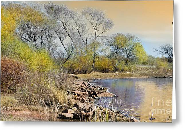 Golden Light Greeting Card by Betty LaRue