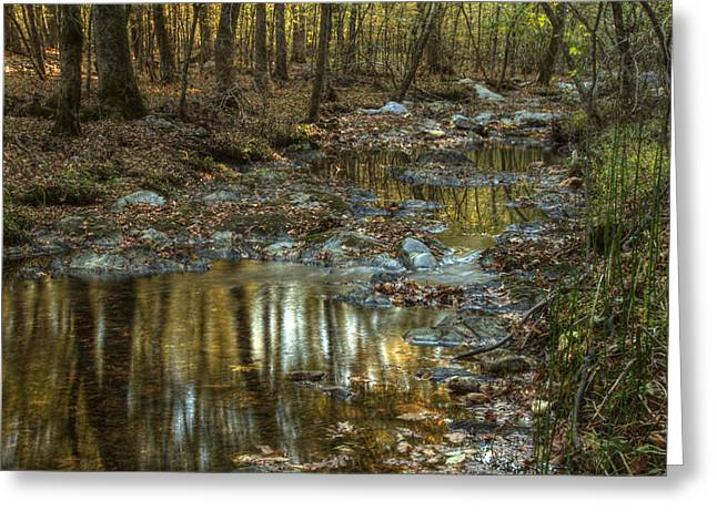Reflections In River Digital Art Greeting Cards - Golden Light in Arkansas Greeting Card by Linda Unger