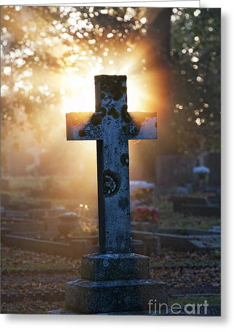 Gravestones Greeting Cards - Golden Light Greeting Card by Tim Gainey