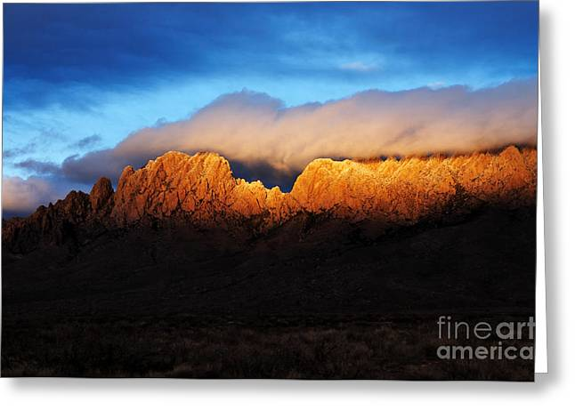 Las Cruces Landscape Greeting Cards - Golden Light Greeting Card by Vivian Christopher