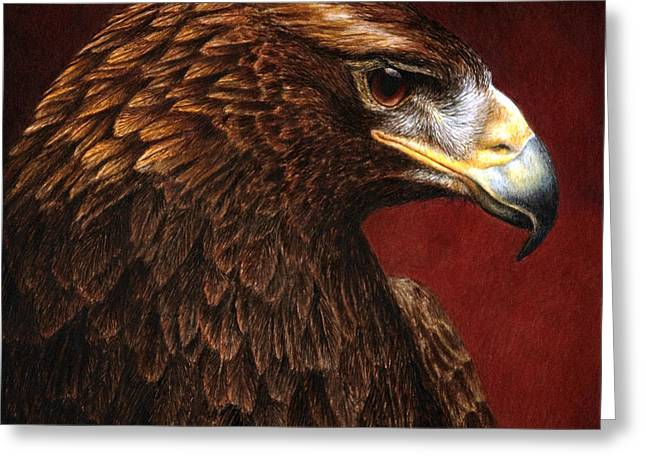 Wildlife Watercolor Greeting Cards - Golden Look golden eagle Greeting Card by Pat Erickson