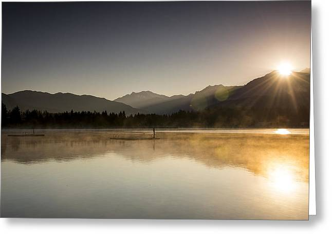Ducks Lakes Greeting Cards - Golden Morning Greeting Card by Aaron S Bedell