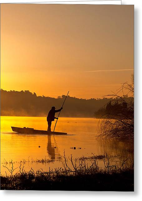 Sunrise Greeting Cards - Golden morning Greeting Card by Jorge Maia