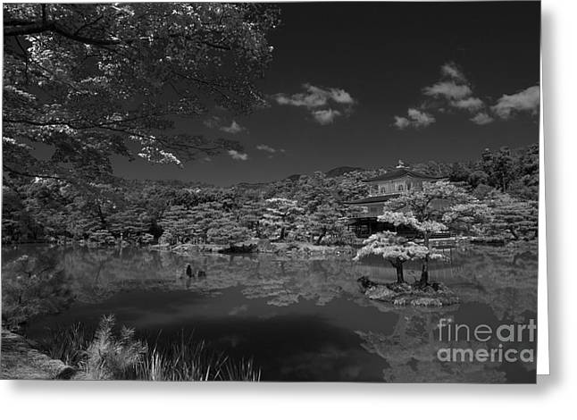 Kyoto Greeting Cards - Golden Pavilion in Infrared Greeting Card by David Bearden