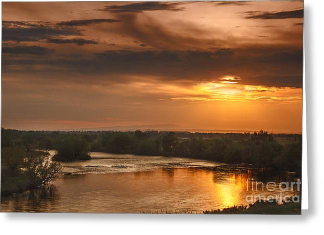 Scenic River Photography Greeting Cards - Golden Payette River Greeting Card by Robert Bales