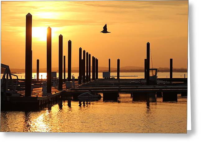 Nantasket Beach Greeting Cards - Golden Pier at Sunset Greeting Card by Patricia Abbate