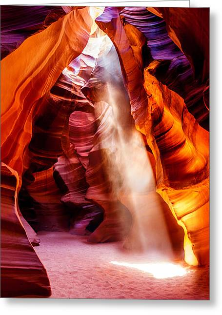 Nature Photographers Greeting Cards - Golden Pillars Greeting Card by Az Jackson
