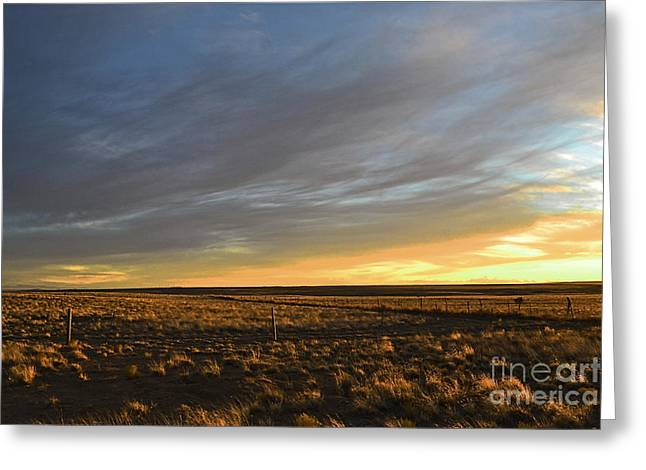 Prairie Sunset Landscape Art Print Greeting Cards - Golden Plains Winter Greeting Card by Andrea Hazel Ihlefeld