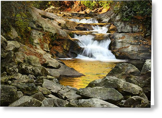 Water Flowing Greeting Cards - Golden Pond Greeting Card by Penny Lisowski