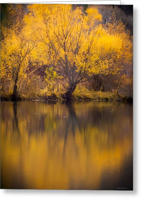 Golden Pond Greeting Cards - Golden Pond Greeting Card by Steven Milner