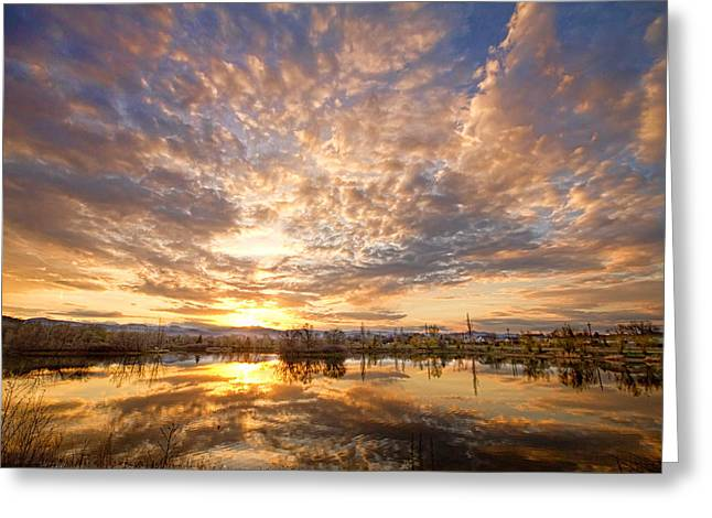 Golden Ponds Scenic Sunset Reflections 5 Greeting Card by James BO  Insogna